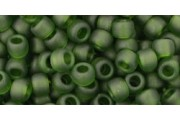 https://eurobeads.eu/52507-jqzoom_default/10gtoho-beads-size-60-color-transparent-frosted-olivine.jpg